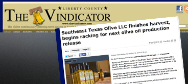"The Vindicator – ""Southeast Texas Olive LLC finishes harvest, begins racking for next olive oil production release"""